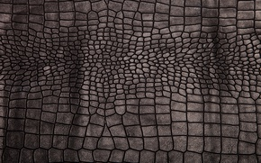 Обои crocodile skin, leather, background, texture, black, кожа