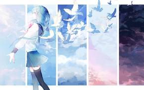 Картинка птицы, maizono sayaka, девушка, арт, dangan-ronpa, голуби