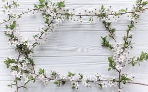 Картинка цветы, ветки, весна, Праздник