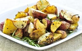Картинка аппетитный, розмарин, картофель