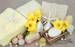 Картинка цветы, мыло, ракушки, flowers, bath, marine, still life, candle, spa, starfish, salt, seashells