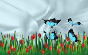 Картинка бабочки, настроение, красота, тюльпаны, обои на рабочий стол