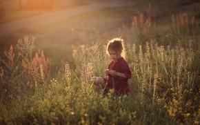 Картинка поле, трава, детство, девочка