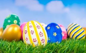 Картинка яйца, пасха, корзина, праздник, травка