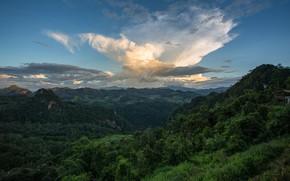 Картинка зелень, небо, облака, панорама, леса