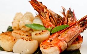 Картинка greens, shrimp, scallop, seafood salad