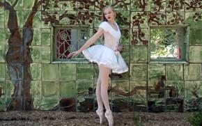 Картинка девушка, поза, балерина