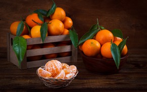 Обои листья, мандарин, цитрус, дольки