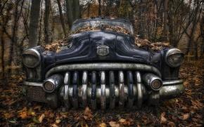 Картинка машина, лес, Lost Beauty