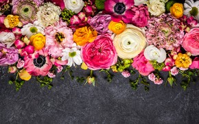 Обои цветы, flowers, composition