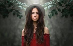 Картинка взгляд, девушка, ветки, фон, настроение, шляпка, длинные волосы