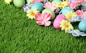 Картинка трава, цветы, Пасха, flowers, spring, Easter, eggs, Happy, яйца крашеные