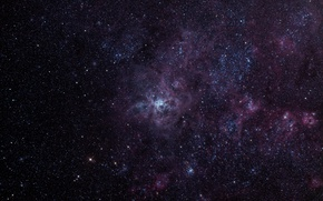 Картинка Золотая Рыба, эмиссионная туманность, Тарантул, в созвездии