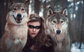 Картинка лес, девушка, волки