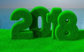 Обои рендеринг, цифры, трава, рождество, 2018, море, новый год, зелень, горизонт