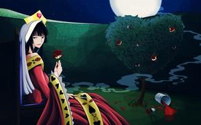 Картинка девушка, ночь, сад, xxxHolic