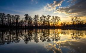 Обои деревья, закат, озеро, отражение, Польша, Poland, Silesia