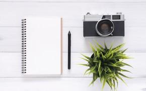 Обои Цветок, Фотоаппарат, Блокнот, Ручка