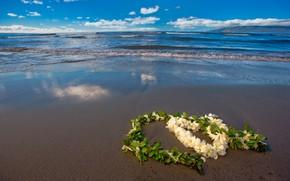 Картинка песок, море, пляж, небо, листья, облака, цветы, сердце, горизонт, День святого Валентина, боке