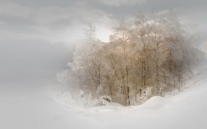 Картинка зима, природа, туман