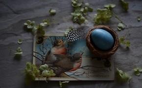 Картинка Открытка, Праздник, Яйцо, Пасха