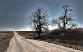 Картинка дорога, небо, деревья