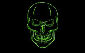 Картинка зеленый, череп, минимализм, голова, скелет, skull