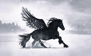 Картинка лес, снег, конь, молния, крылья, black pegasus