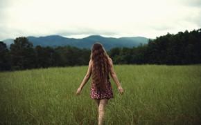 Картинка поле, трава, девушка, Free, локоны, NoelleBuske