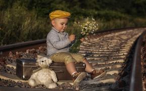 Картинка цветы, игрушка, рельсы, ромашки, мальчик, железная дорога, медвежонок, кепка, чемодан, плюшевый мишка