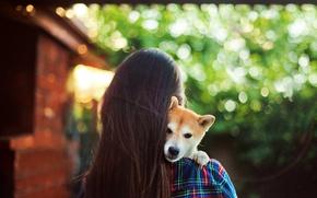 Картинка girl, Dog, puppy, long hair, photo, hug, animal, brunette, back, depth of field, from behind
