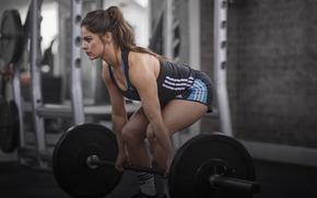 Обои workout, gym, girl, fitness