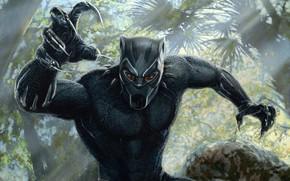 Картинка лес, чёрный, рисунок, маска, джунгли, арт, костюм, когти, Black Panther, Чёрная Пантера