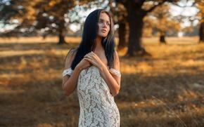 Картинка девушка, лицо, поза, милая, платье, брюнетка, луг, прикосновение, light, красивая, прелесть, плечи, nature, симпатичная, выражение, …