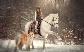 Картинка зима, снег, лошадь, собака, девочка, наездница