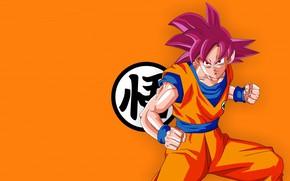 Картинка alien, anime, man, orange, martial artist, manga, Son Goku, kimono, Dragon Ball, Goku, Dragon Ball …