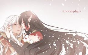 Картинка девушка, кровь, парень, Fate - Apocrypha