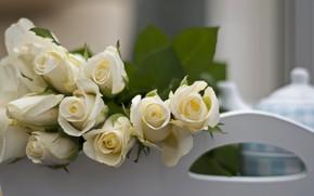 Картинка цветы, розы, букет, white, белые, flowers, bouquet, roses