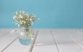 Обои цветы, букет, ваза, белые, with, flowers, vase