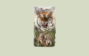 Картинка природа, игры, тигрица, тигрята