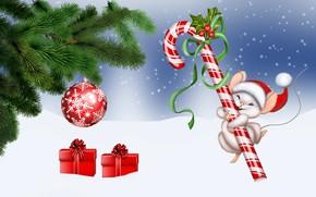 Картинка zima, Boże Narodzenie, Lizak, myszka