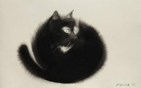 Картинка фон, белое, черное, акварель, живопись, пушистик, черная кошка, Endre Penovac, живопись по-мокрому