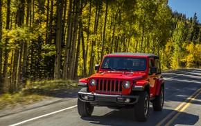 Обои зелень, 2018, Jeep, деревья, дорога, разметка, обочина, Wrangler Rubicon, красный