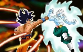 Картинка DBS, game, anime, fight, asian, martial artist, manga, oriental, Dragon Ball, shonen, japonese, Dragon Ball …