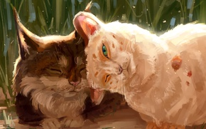 Картинка кошка, природа, рысь, by AlaxendrA