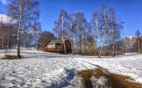 Картинка зима, снег, дом, берёзы