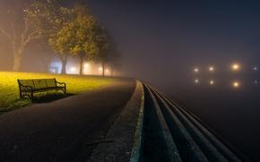 Обои город, ночь, скамья, туман