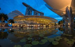 Картинка деревья, дизайн, огни, пруд, парк, пальмы, вечер, Сингапур, строения