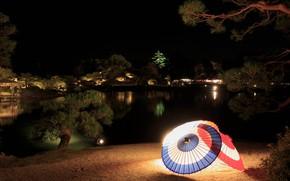 Картинка деревья, ночь, огни, пруд, Япония, сад, фонари, зонты, Okayama