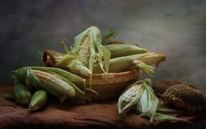 Картинка лето, кукуруза, натюрморт